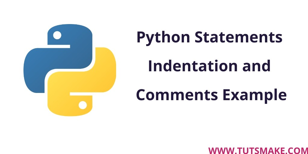 Python 3.9 Statements Indentation and Comments Example