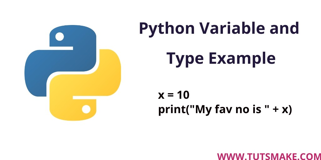 Python 3.9 Variable and Type Example