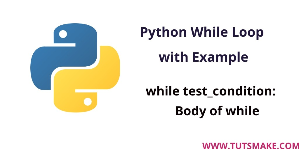 Python 3.9 While Loop with example
