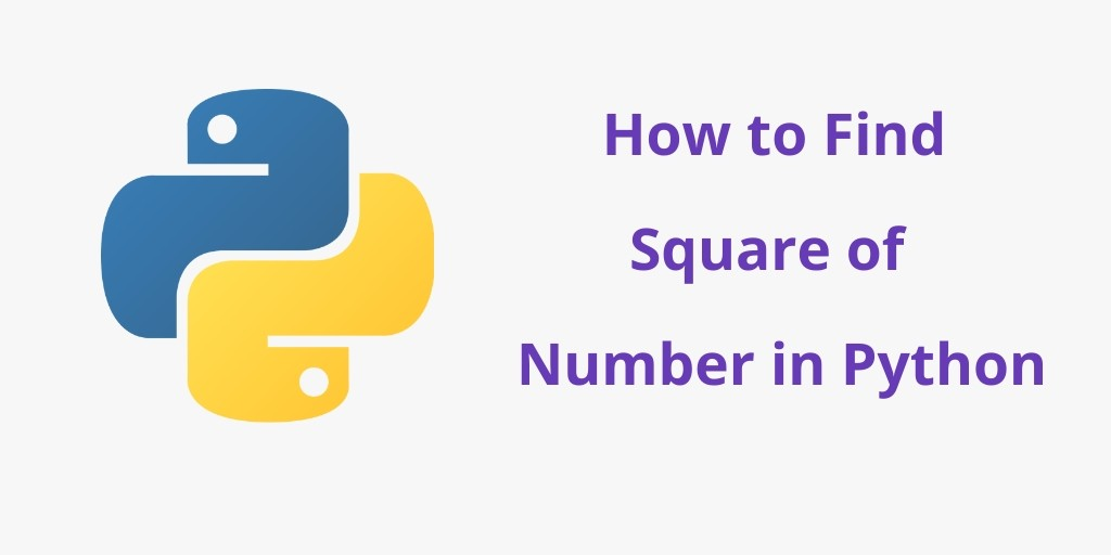 How to Find Square of  Number in Python