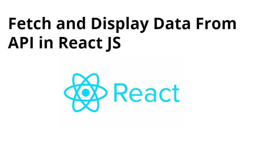 Fetch and Display Data From API in React JS